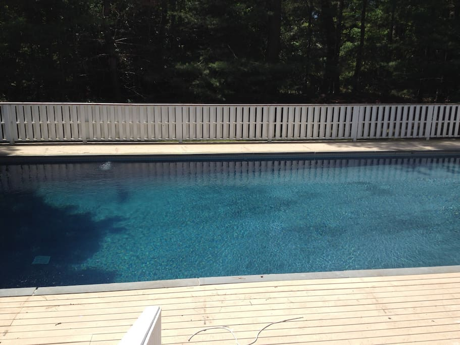 Large, private, gunite pool surrounded by foliage
