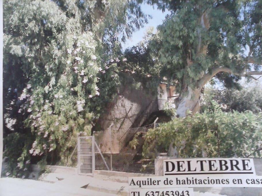 Acceso privado, por jardín a la propiedad (desde Avd. Generalitat)