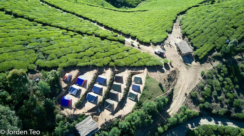 Get Lost in highest campsite inSouth India