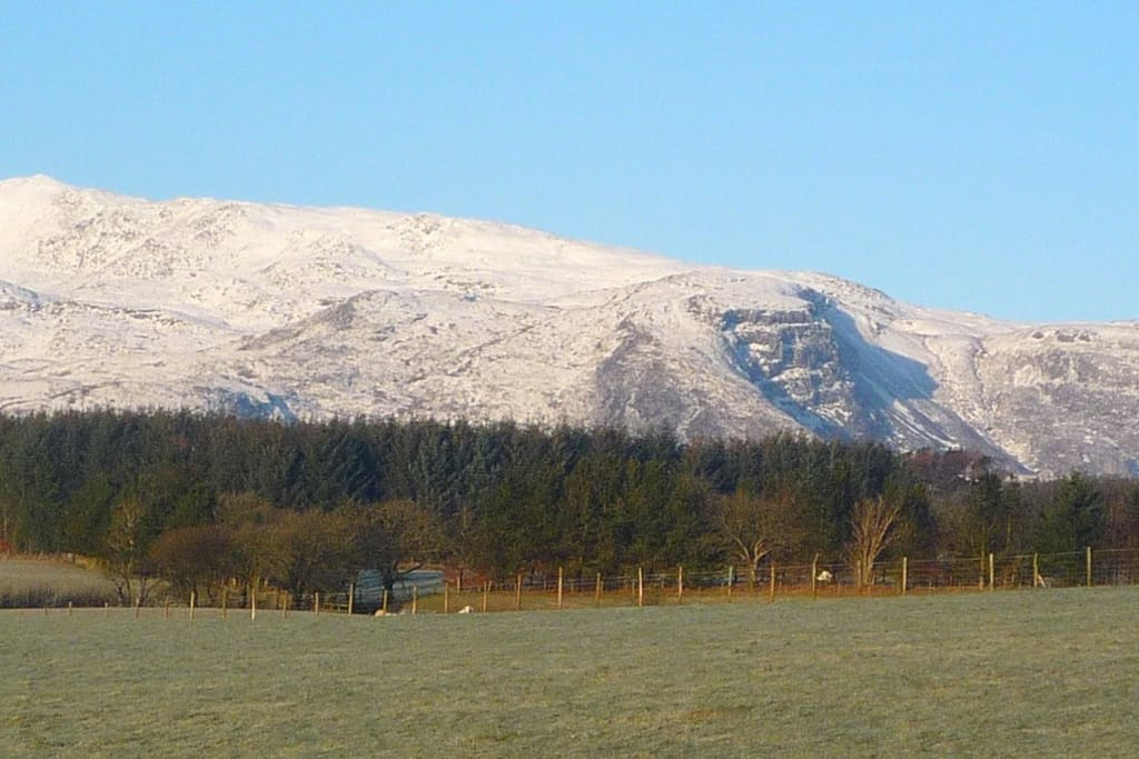 View of the Arenig Mountain from Cynythog