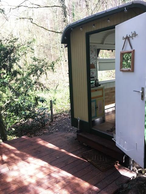 Tiny House in der Pfalz - Bauwagen im Pfälzer Wald