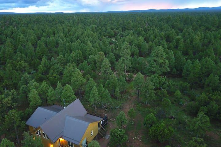 Pine Haven -Cabin on 5 Acres Backs National Forest