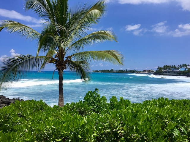 Kona bay on a beautiful day, this is Ali'i Drive, about 10 minutes by car from the Hale