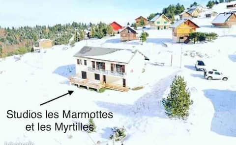 Studio Les Myrtilles