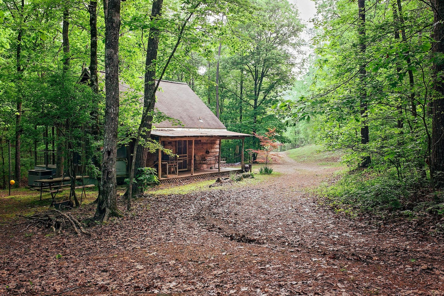 """Lone Cedar Cabin. A favorite for couples, honeymooners and small families. At the """"End of the trail"""""""