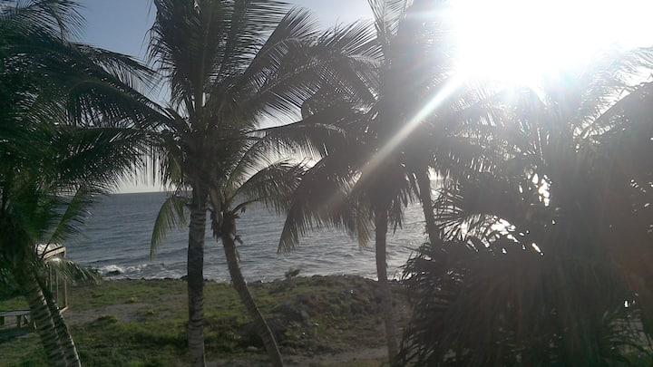 1-pers kamer aan strand en zee, centraal gelegen.