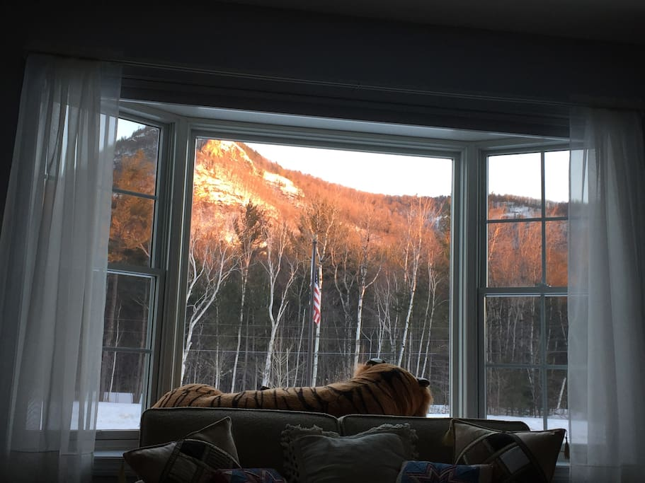 The view from the living room in Winter.