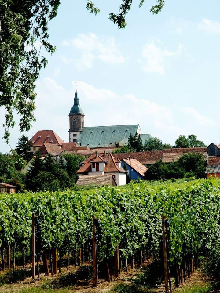 Le vignoble d'Epfig en Alsace ; gîte plain pied