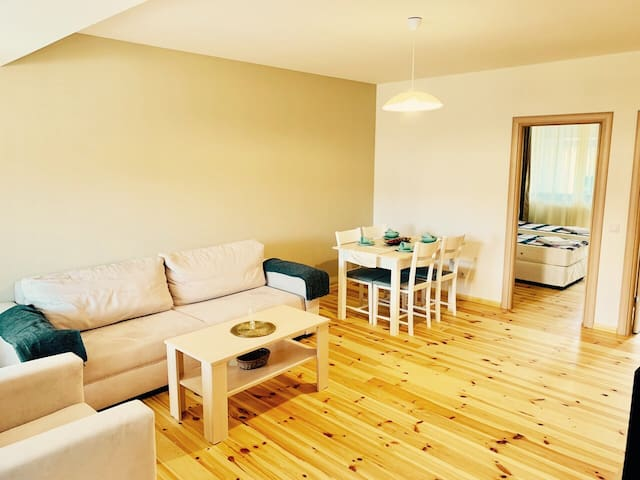Cozy two-bedroom apartment, 100 met. from ski lift