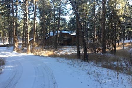 Gorgeous Wooded Estate Sleeps 20+ - Franktown - Casa