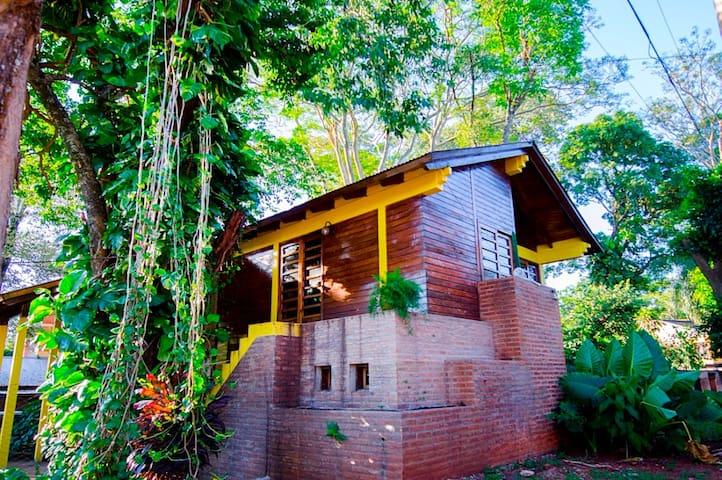 Casa soñada 1. Mucho verde. Cálida y luminosa