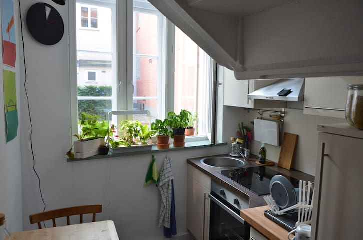 2 Room Flat in the Historic Centrum of Lübeck - Lübeck - Apto. en complejo residencial