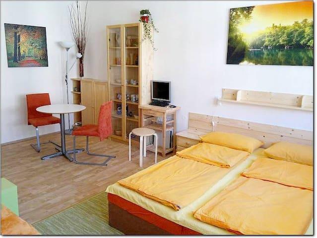 MACHEK´s apartments - apartment, central Prague