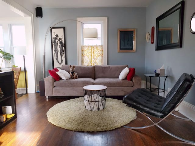 Pet Friendly Retreat in the City
