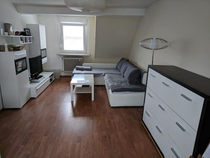 Penthouse: central and quiet. App. 2 rooms, 4 beds