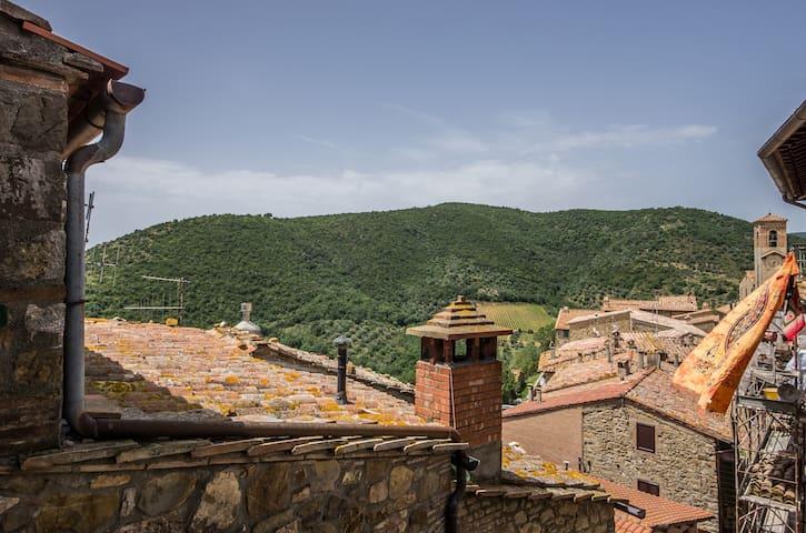 #La Ghibellina MONTALCINO - Castelnuovo dell'Abate - Daire