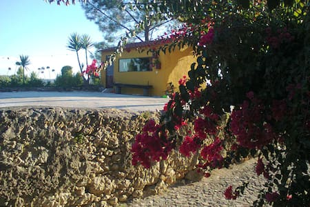 Estúdio do Monte da Casa Amarela - Montemor-o-Velho