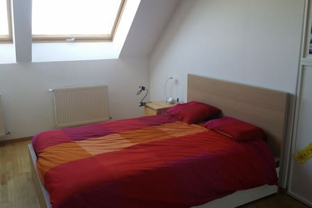 Fully furnished room and studio, shared flat - Vienne - Appartement
