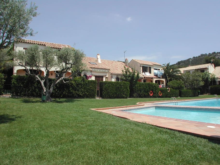 Garden and pool