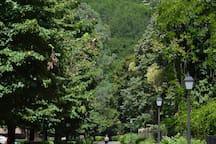 Parque Natural del Señorío de Bertiz