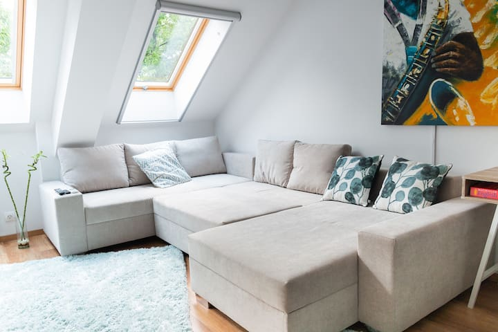 The large sofa can accommodate 2 guests and is very comfortable.