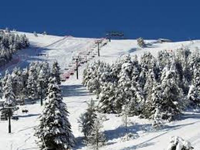 A prop Estació Esquí La Molina i La Cerdanya