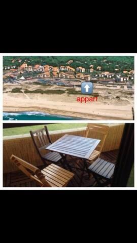 Charmant studio 4 pers à la plage, refait à neuf.