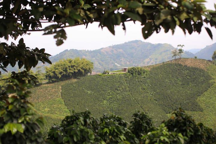 Villa Las Gloritas - El Jardin Estate