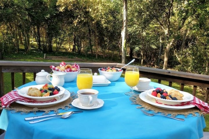 Luxurious Bed & Breakfast Nature Retreat in City