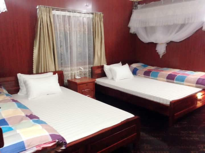 Bungalow Double bed - Green Hill Hostel