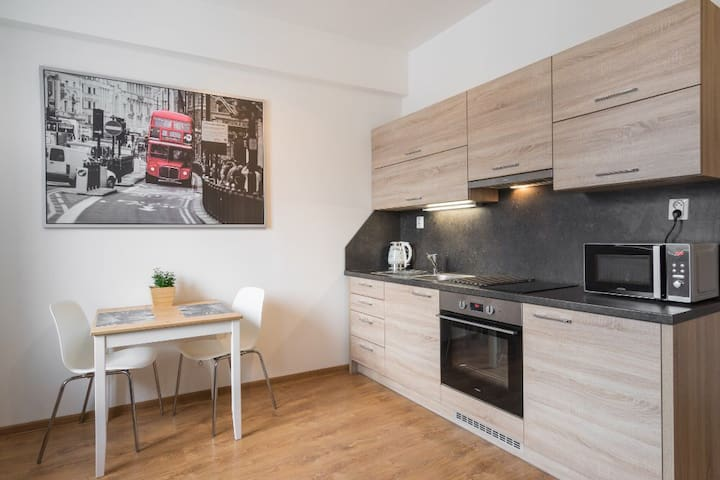 Apartment Stara in centre of Brno - Brno