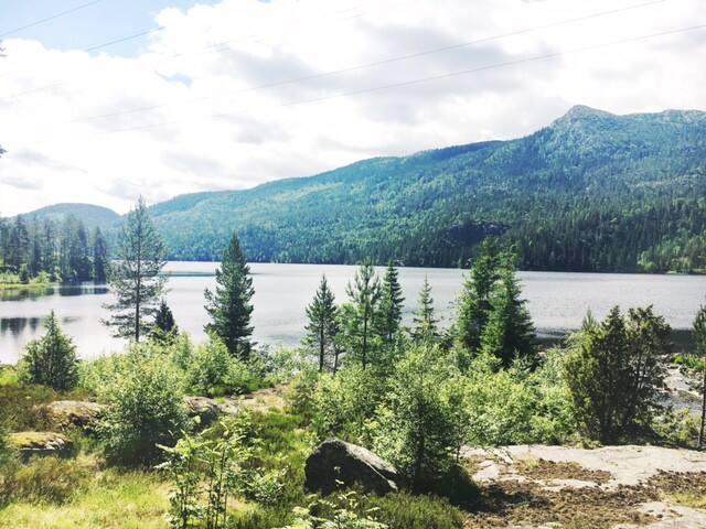 Skikkelig hytte hytte til leie - Telemark - Chalet