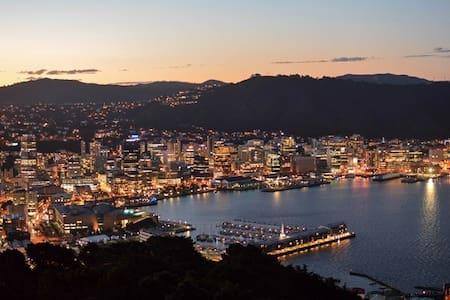 Sunny spot in Mt Victoria. Peaceful. 30sec to town - Mt Victoria, Wellington  - Villa