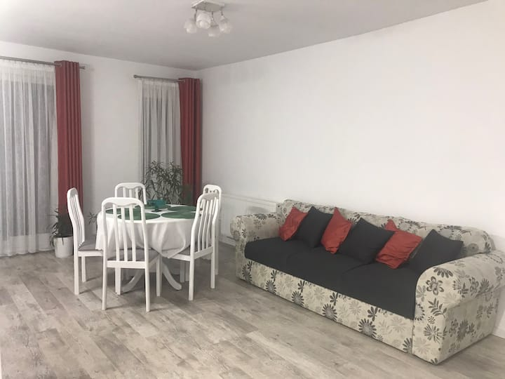 Reea's Apartment in Sibiu