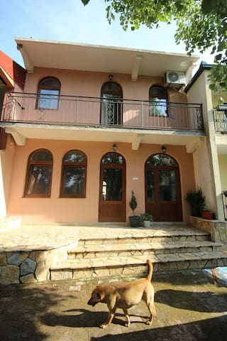 Apartment Villa Olga Besac