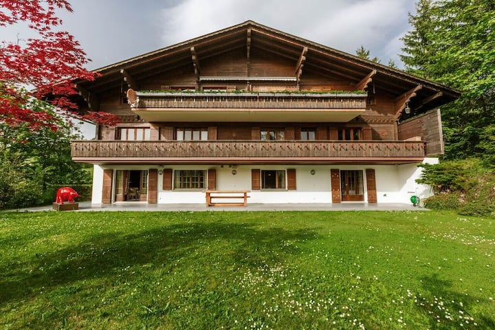 Super Luxury Flat in Gstaad Best Oberbort Location