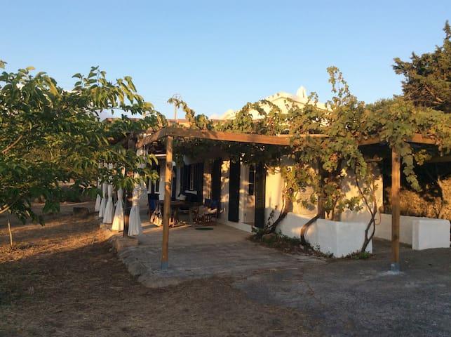 Preciosa casa de campo en Alaior  //  Jolie maison - Alaior - House