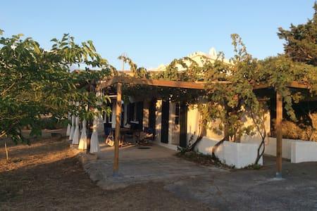 casa lemon - Alaior - Casa cova
