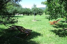 Grand jardin privatif