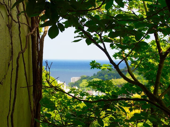 """海の見える別荘""""Villa with view of the sea"""""""