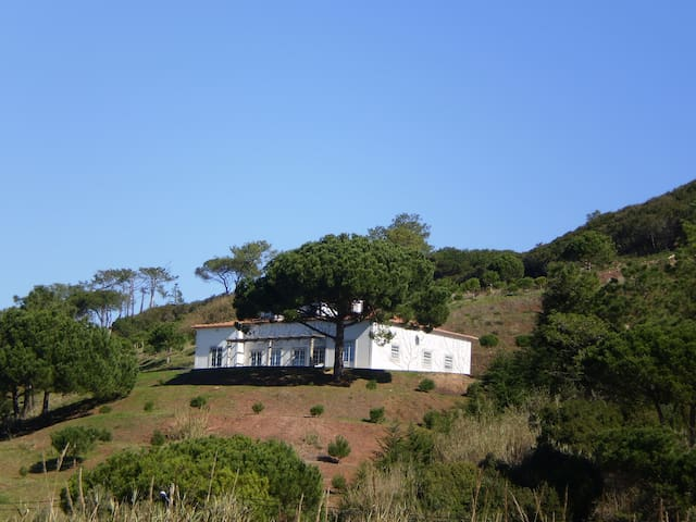 Countryhouse villa near Óbidos Castle