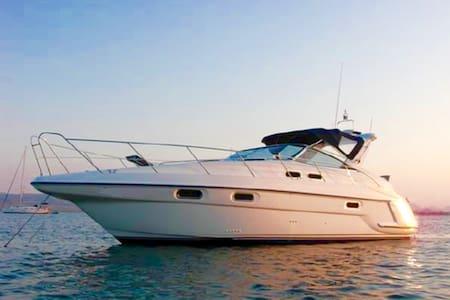 GOZO Luxury Sealine Sports Cruiser & Breakfast
