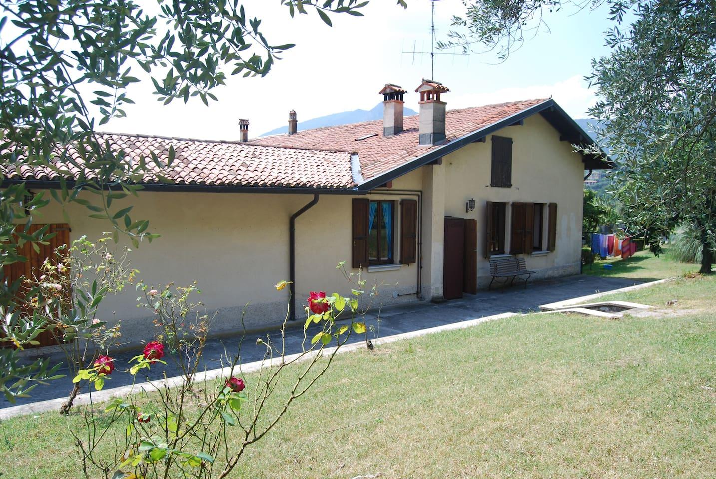 House B - Backyard and Garden
