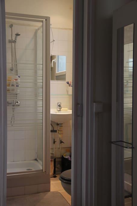 Petite salle de douche avec wc. Fenêtre donnant sur cours permet d'aérer.