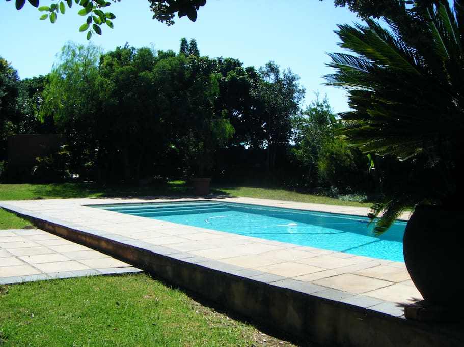 Slightly larger than the average home pool, this pool is set in a lovely well maintained garden
