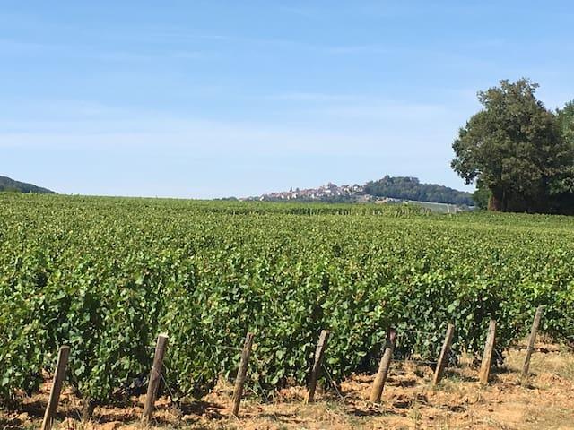 Havre de paix au pied des vignes