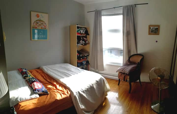 Appartement cozy au coeur du plateau Mont Royal