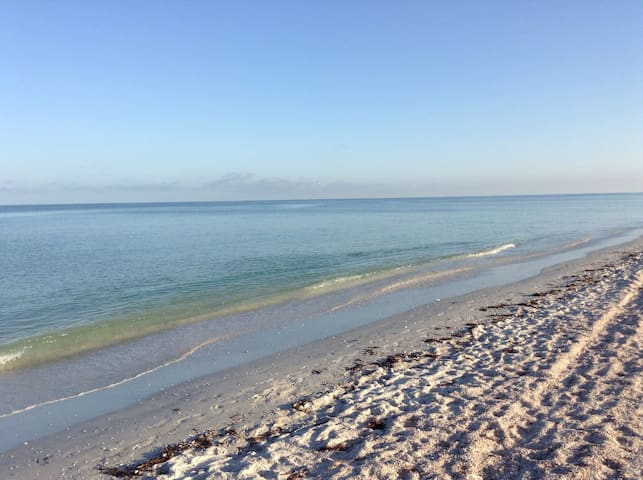 White Sands of Clearwater Beach!#5 - Clearwater - Lägenhet