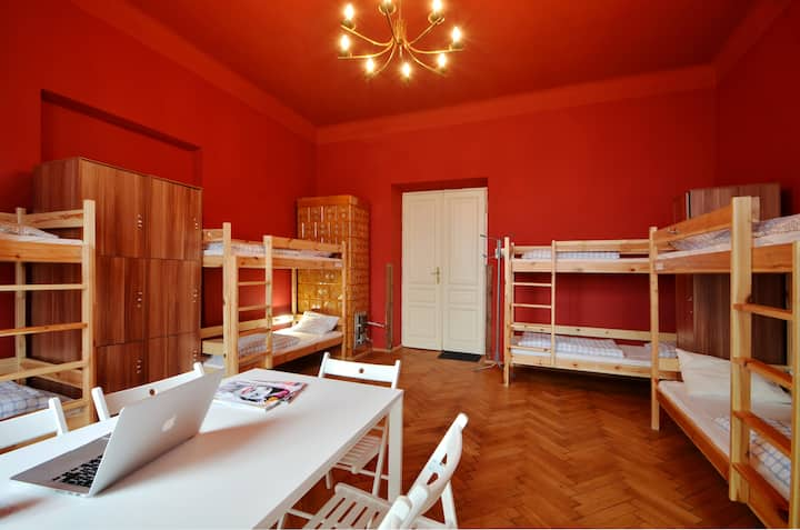 ONE bed in Mixed Dormitory Room