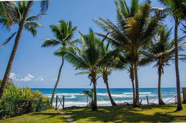 2 Bedroom Beachfront House - Cabarete - Casa